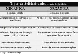 Solidariedade mecânica e Solidariedade Orgânica