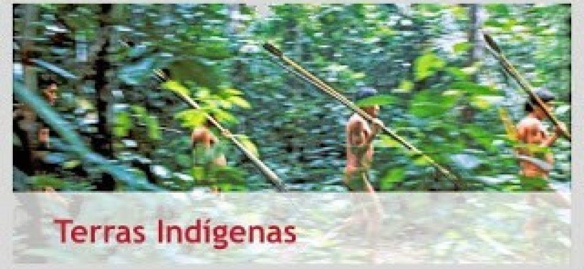 Site sobre os índios brasileiros