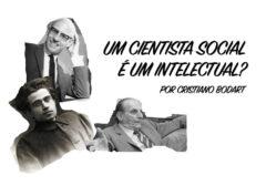 O cientista social é um intelectual?