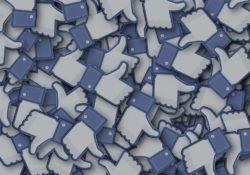 Ao entrar no facebook, não esqueça de se despir da razão… seja cordial à lá Holanda.