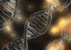 Cientista chinês altera genes de embriões humano