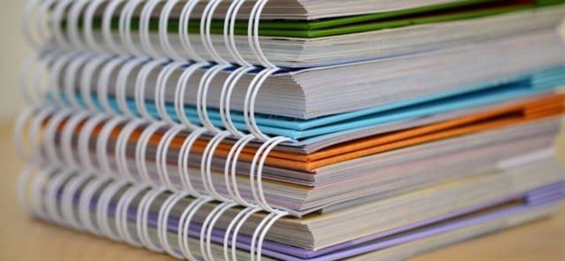 Currículo de Sociologia – Orientações didáticas Oficiais – OCNs, PCNs etc