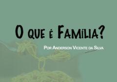 O que é família? Uma contribuição ao conceito de família
